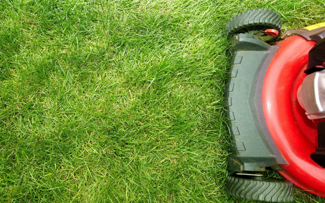 How Executive Lawn Care is Keeping Clients Safe During COVID-19